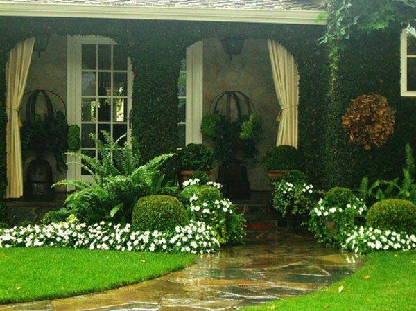 grüne pflanzen mit weißen blüten - garten neu gestalten ...