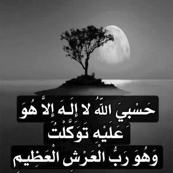 Desertrose حسبي الله لا إله إلا هو عليه توكلت وهو رب العرش العظيم رددها سبع مرات كل يوم تكفيك من كل شيء Movie Posters Quran Hadith