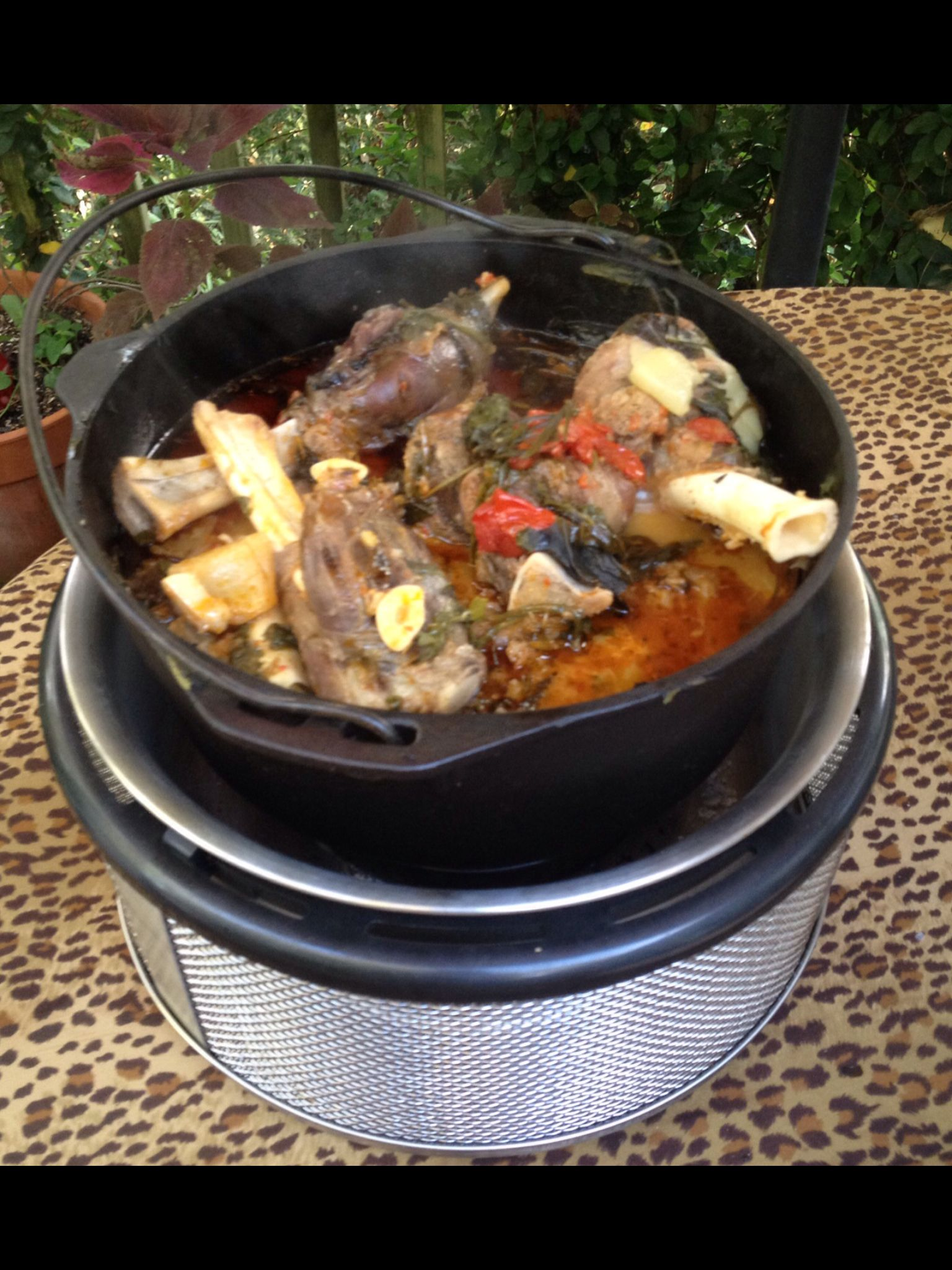 Pizzasteen Weber Dutch Oven With A Lamb Stew On The Cobb Placed Directly On The