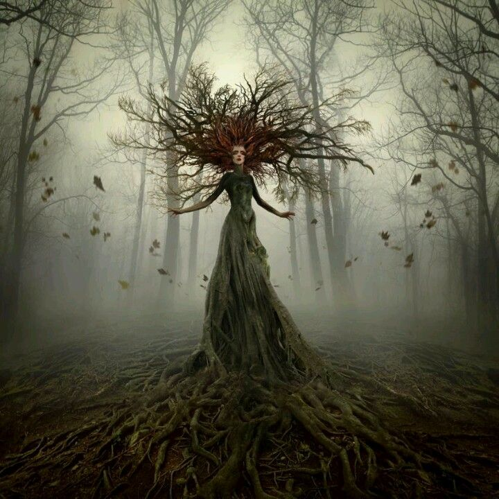 The Lady of forest.....