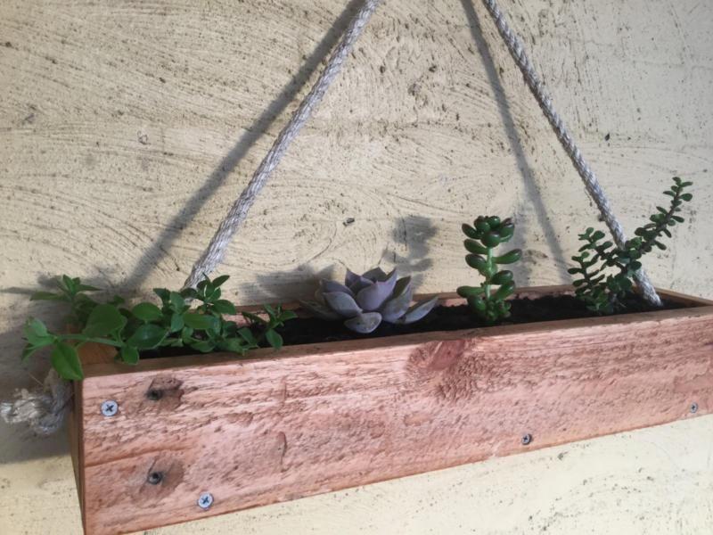 Wooden Hanging Succulent Garden Planter Box Plants Gumtree