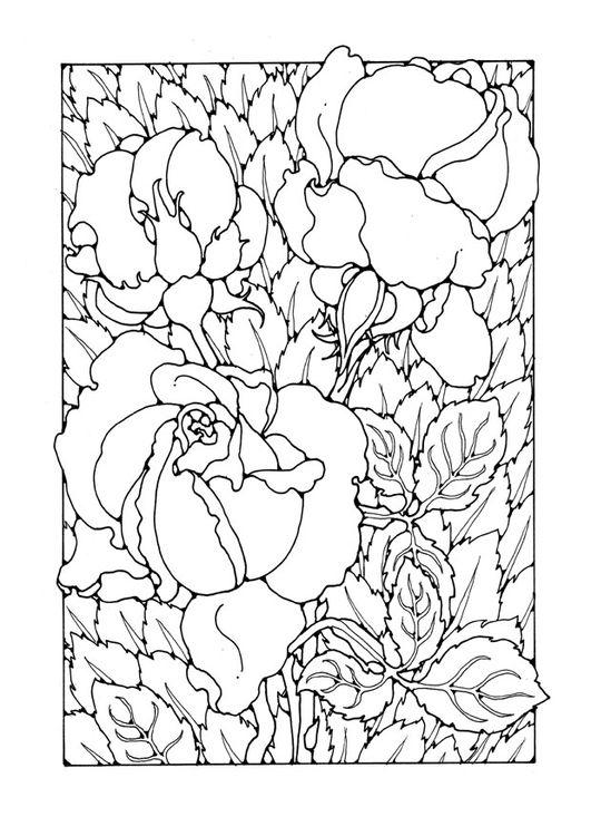 Mandala Kleurplaten Rozen.Kleurplaat Rozen Marieke Kleurplaten Kleuren En Rozen