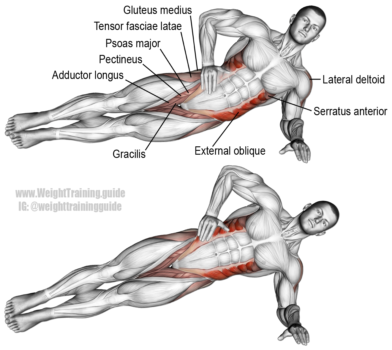 Lying side hip raise. An isolation push exercise that ...