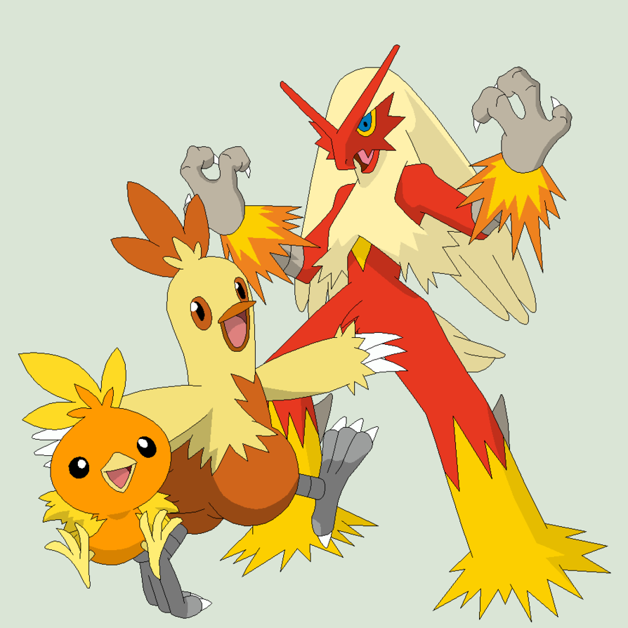 Pokemon 50 Torchic Evolution By Xbox Ds Boy On Deviantart