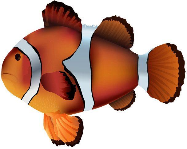 water baby image clownfish cutout clownfish image fish image fish