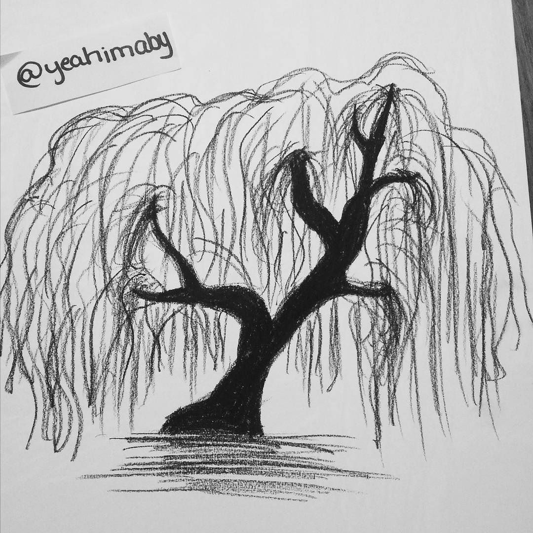Weeping Willow. #drawingoftheday#drawing#charcoal#tree# ...  Weeping Willow....