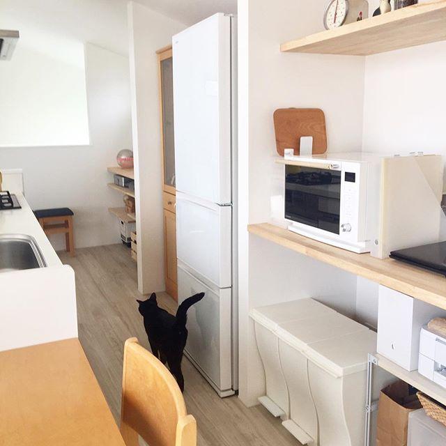 狭いキッチンのゴミ箱置き場どうしてる デッドスペースを作らない賢いアイデア実例集 Folk ゴミ箱 キッチン 狭い キッチン 賃貸キッチン