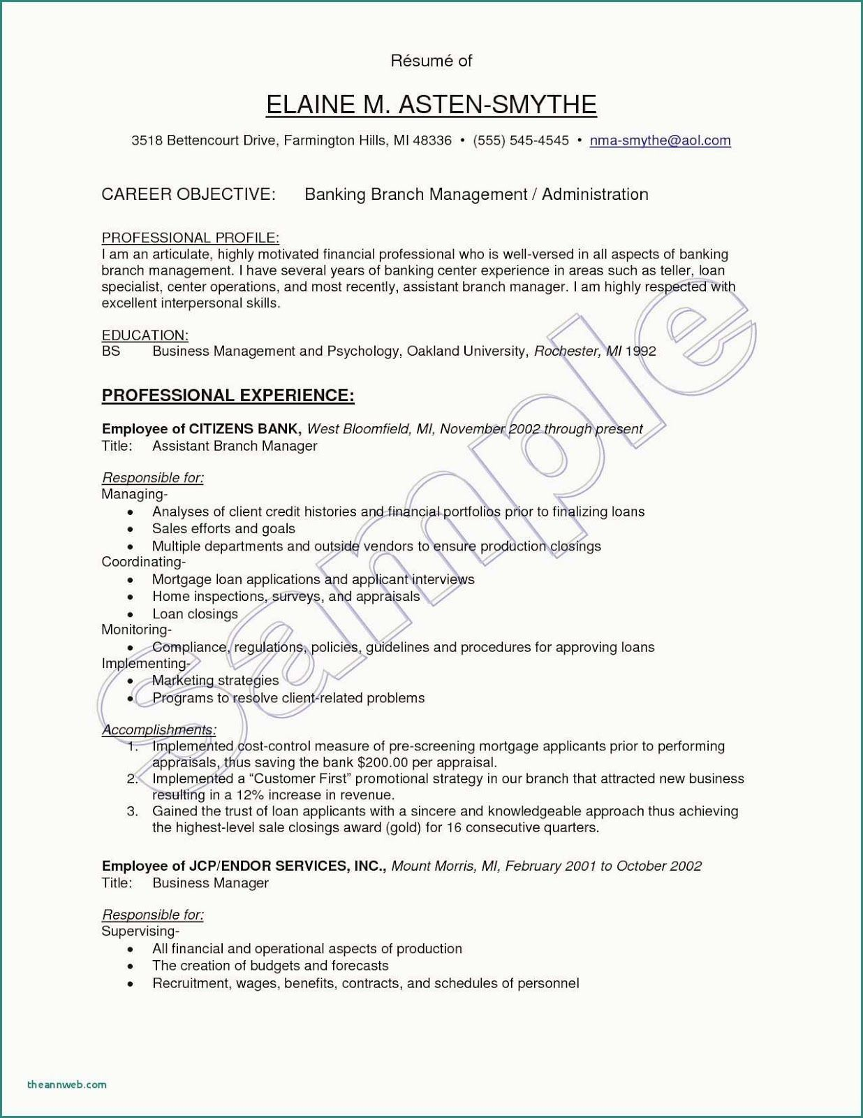 Bank Teller Resume Template 2019 Bank Teller Resume Examples 2020 Click More Photo Resume Resu Resume Objective Examples Marketing Resume Resume Examples