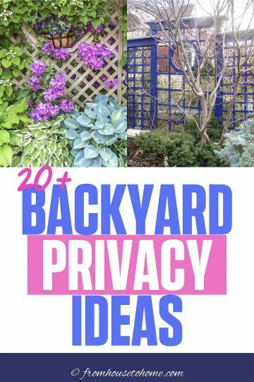 Backyard Privacy Ideas For Screening Neighbors Out - Gardening @ From House To Home