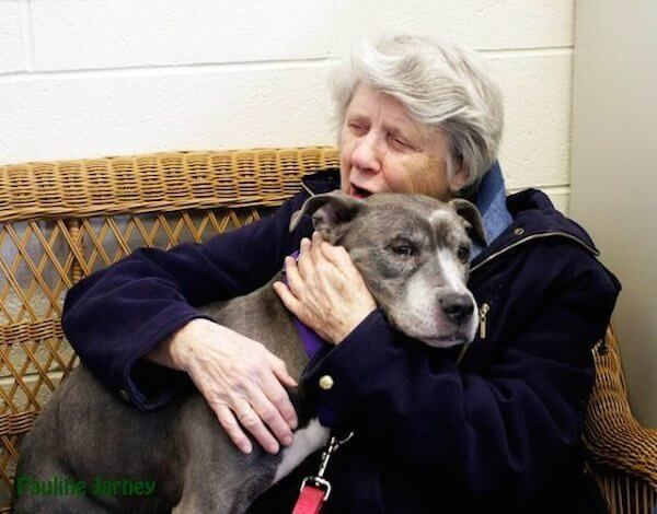 Nuns Adopt Unwanted 9-Year-Old Pit Bull From Shelter - http://eradaily.com/nuns-adopt-unwanted-9-year-old-pit-bull-shelter/