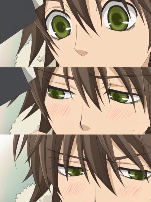 Junjou Romantica ~ blushing   Anime, Yaoi anime, Junjou ...