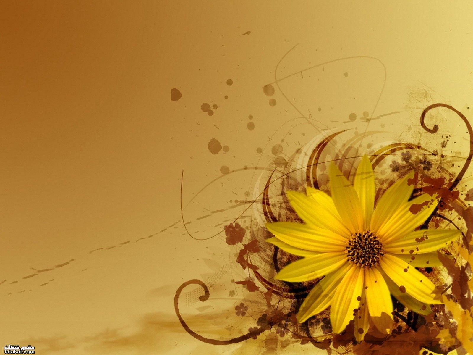 خلفيات بحث Google Abstract Wallpaper Yellow Flowers Abstract