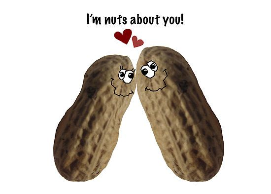 I M Nuts About You By Graphicdoodles Funny Valentines Gifts Funny Valentine Valentines Gifts For Him