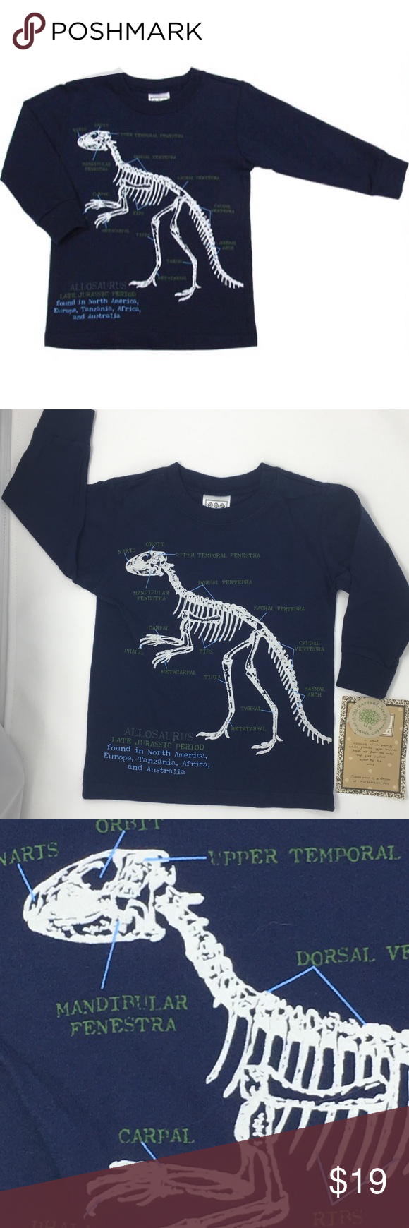 daf7e4d3d Mulberribush Boys Navy Dinosaur Fossil Tee Shirt T Mulberribush Shirts &  Tops Tees - Long Sleeve