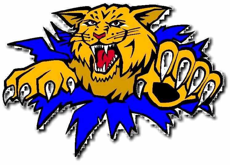 CC for Wildcat Logo Please Concepts Chris Creamer's