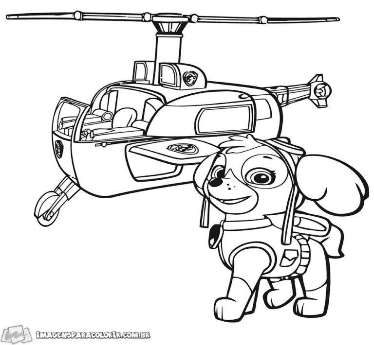 Patrulha Canina Imagens para Colorir Skye patrulha