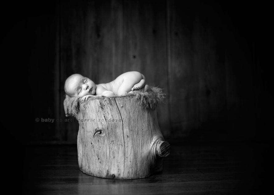 Outdoor newborn photography newborn photography workshop give thanks part 4 baby as art