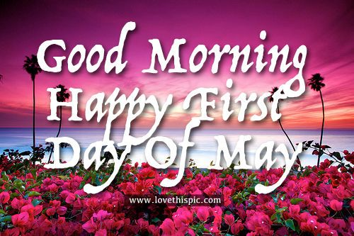 Good Morning Happy First Day Of May May Good Morning May Quotes