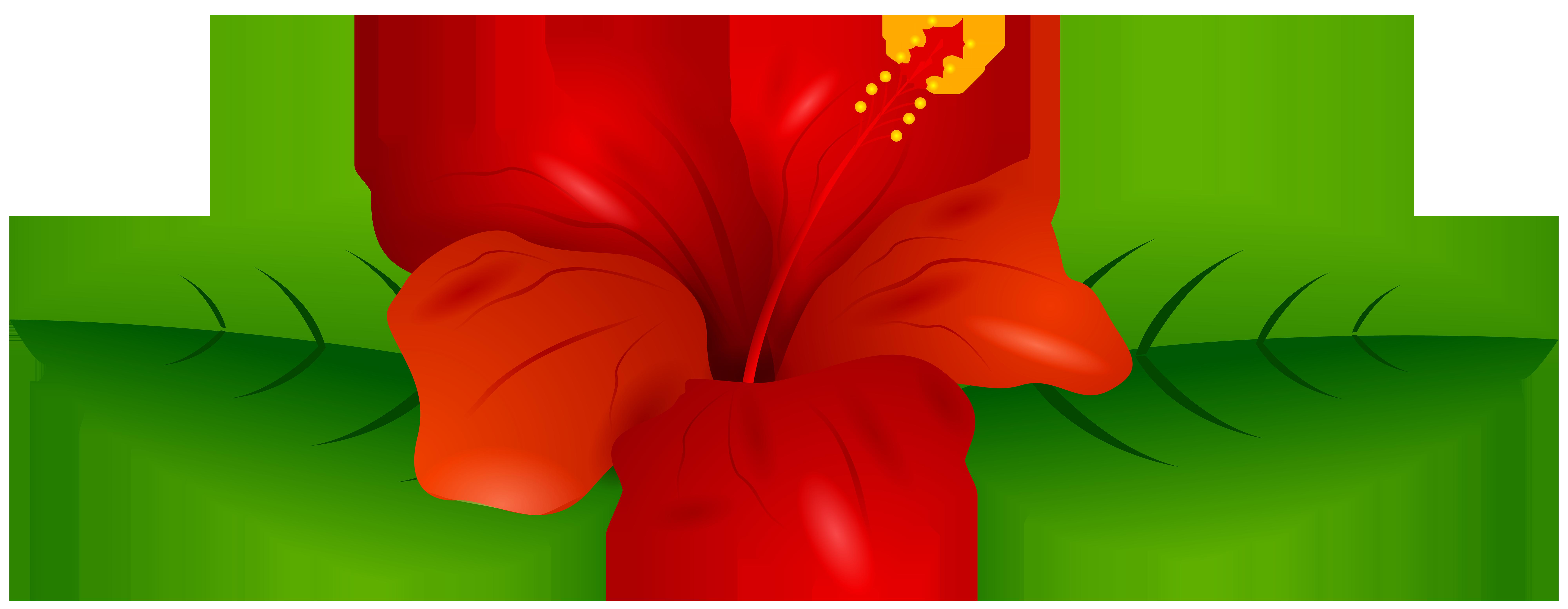 Red Hibiscus Transparent Png Clip Art Image Art Images Flower Art Clip Art