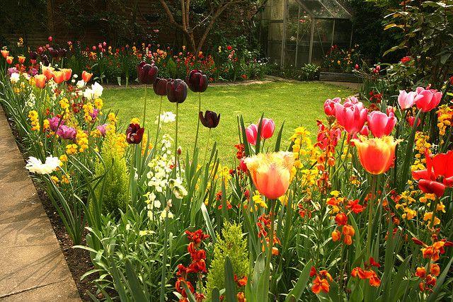 My Spring Flower Garden In Marlow England Gardens Gardening