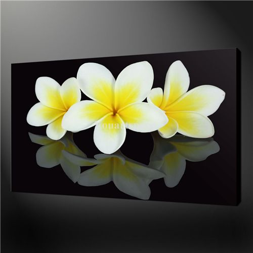 Wall Art Painting Pictures Print On Canvas Black And White Frangipani Flowers Wall Design The Picture For Home Decoratio Painting Art Painting Artwork Painting