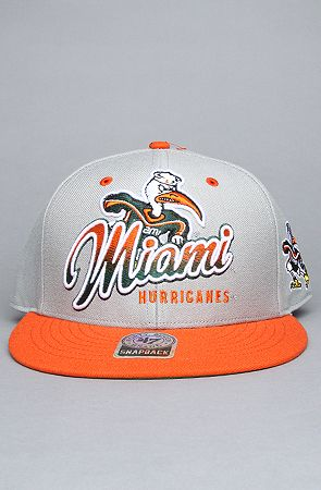 20119c38a770 The Miami Hurricanes Gray Tricky Lou MVP Snapback Hat in Gray ...