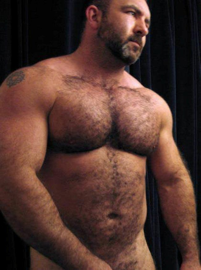 Gay bears pics hairy mexican guys images