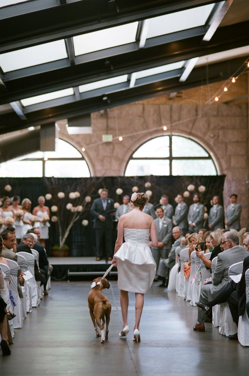 bride support word press blog https bridesupport wordpress com