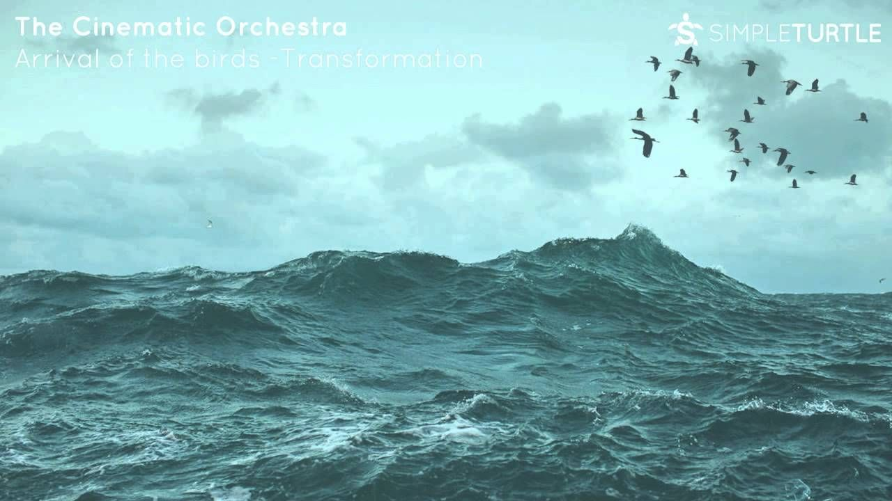 The Cinematic Orchestra - Arrival of the birds & Transformation ...