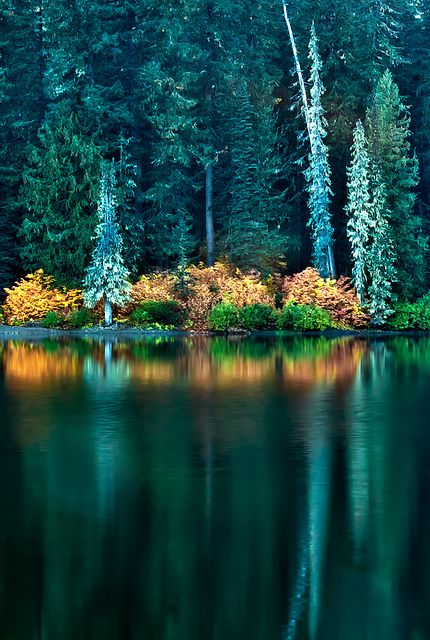 A Human Being Is A Part Of The Whole Called Beautiful Nature Nature Nature Pictures