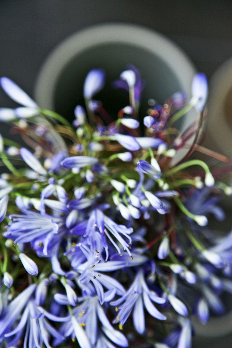 Die große #LoveSong Vase- nordisch schön und voll Liebe | Hier im #KONTOR1710