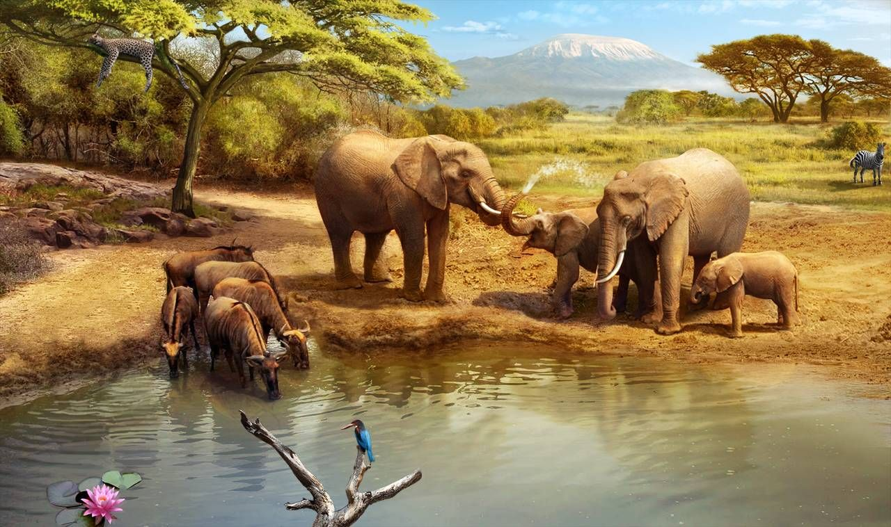 Gardens of Time   Watering Hole   Gardens of Time   Pinterest ...