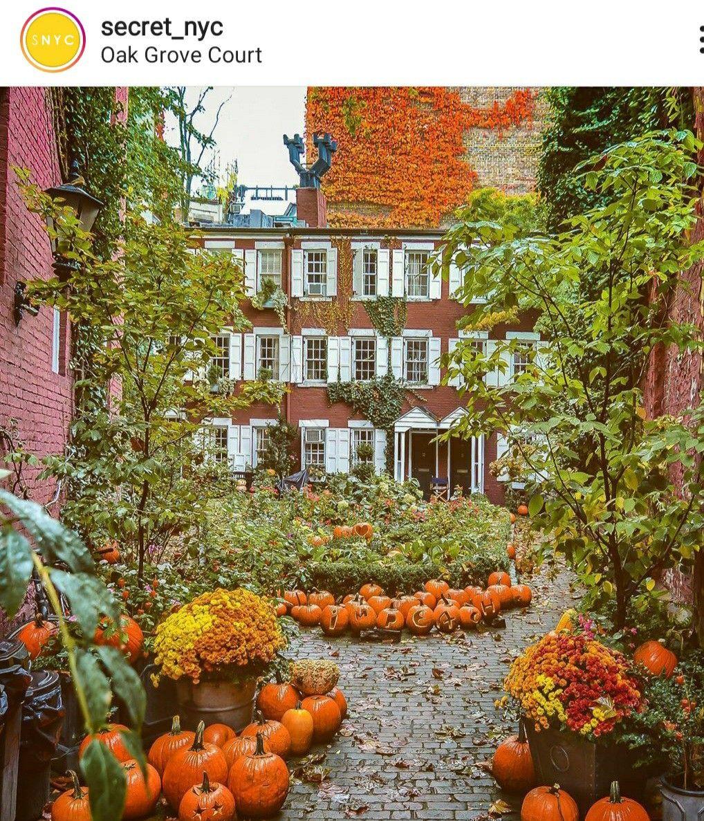 Pin By Deborah Basile Haskamp On I 3 Ny In 2020 Pumpkin Patch Pumpkin Oak Grove