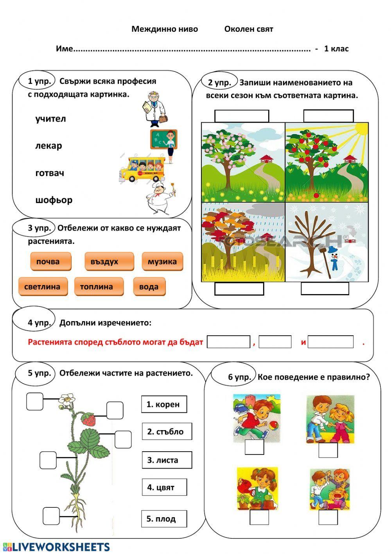 Междинно ниво Околен свят 1. клас Interactive worksheet