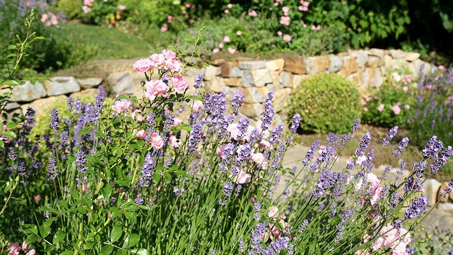 Super Ein schöner Garten - Romantischer Garten | Garten | Romantische #LB_93