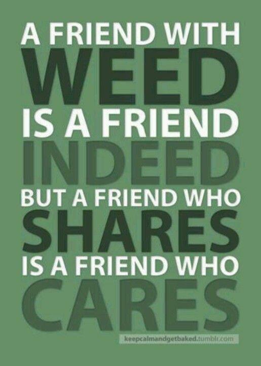 Pin on Marijuana Quotes