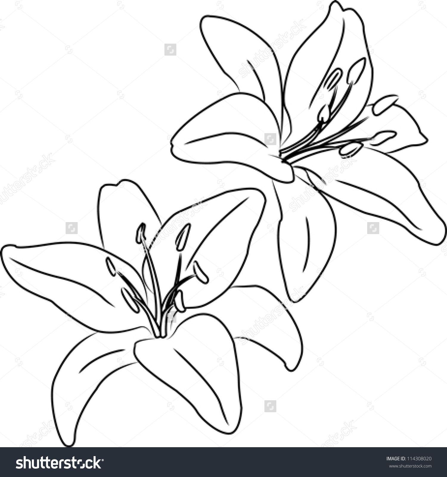 Pin By Vivian Draper On To Do List Pinterest Drawings Flowers