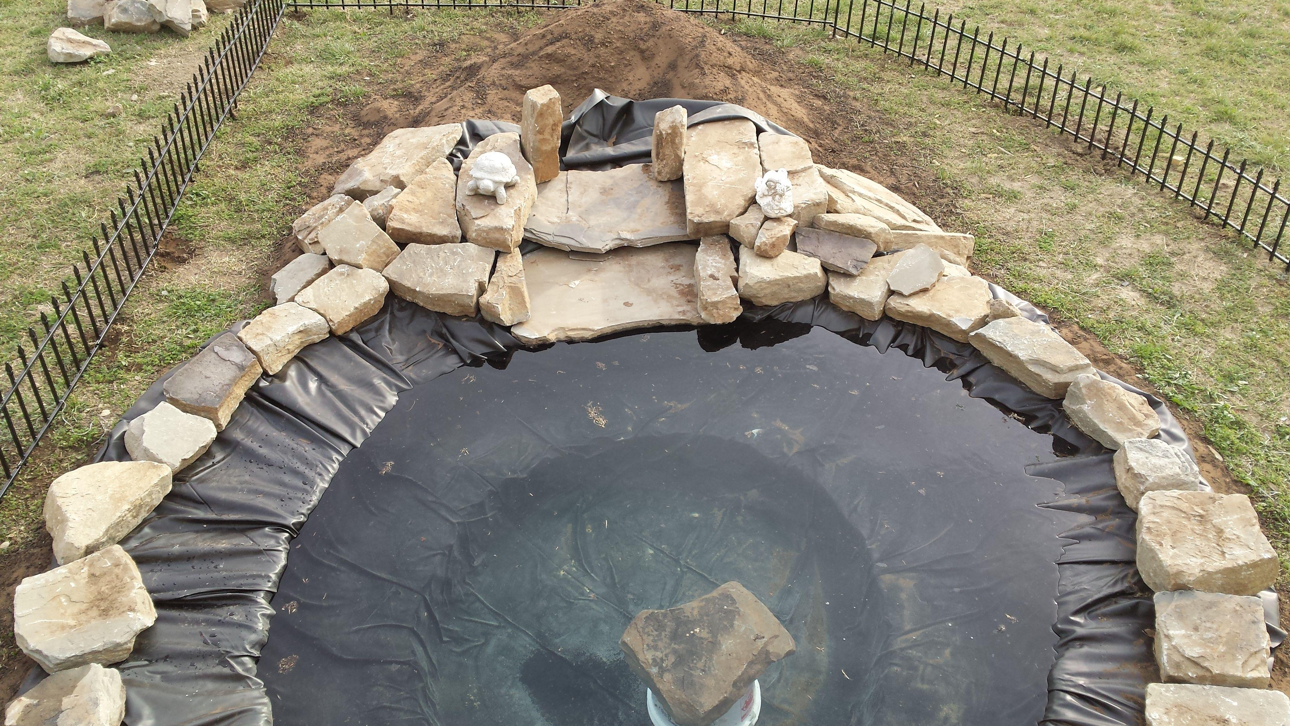 back yard turtle pond filled | Turtle pond, Decor, Outdoor ...