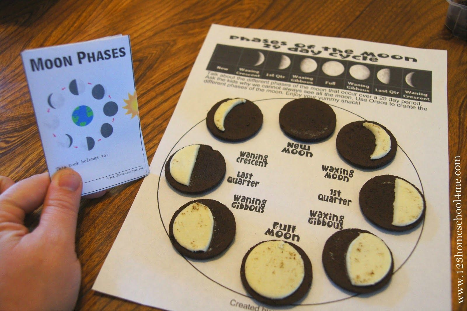 Image Result For Phases Of The Moon Calendar For Kid
