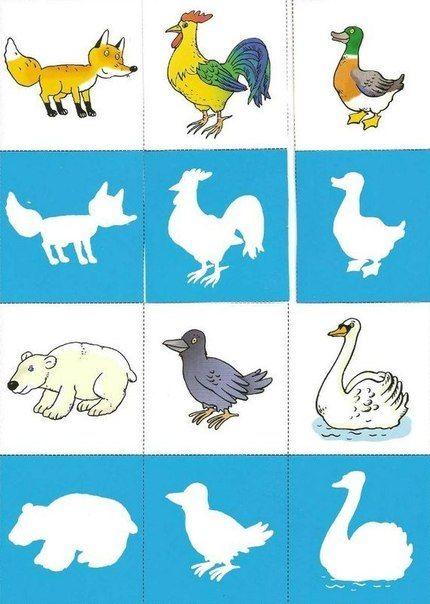dieren en hun silhouet 2