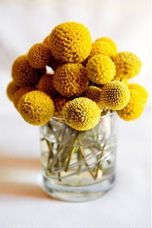 Simple Billy Ball Arrangement Modernthanksgiving Yellow Wedding Flowers Flower Arrangements Diy Trendy Flowers