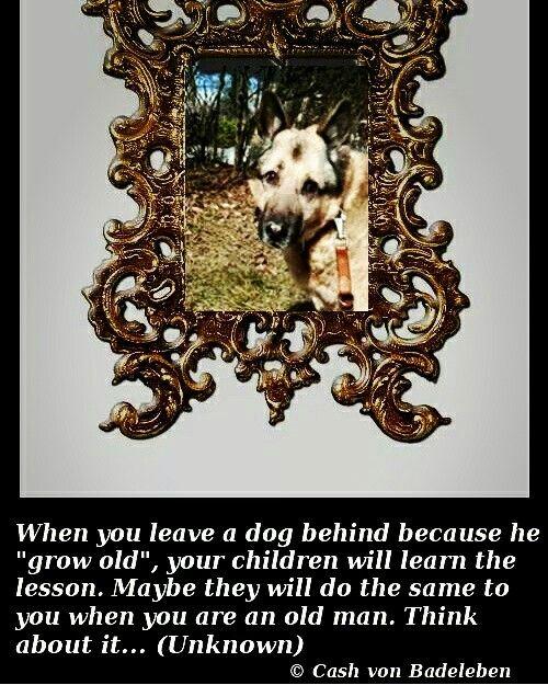 Think about it...  www.facebook.com/cash.von.badeleben