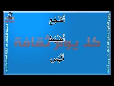 الأسد أشهر أسماء الأسد في اللغة العربية وبعض منها