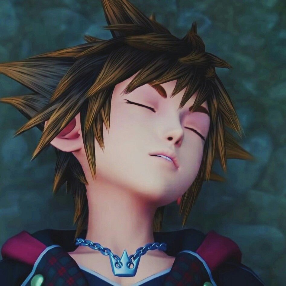 Sleeping beauty | Sora kingdom hearts, Kingdom hearts, Kindom hearts