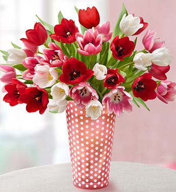 Red and white tulips in red and white polka dot vase