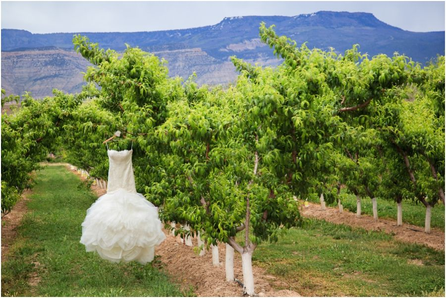 High Country Orchards Colterris Winery Palisade Wedding | Mallory & Jan_0001