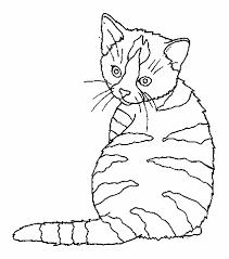 imagini pentru window color modele | cat coloring page