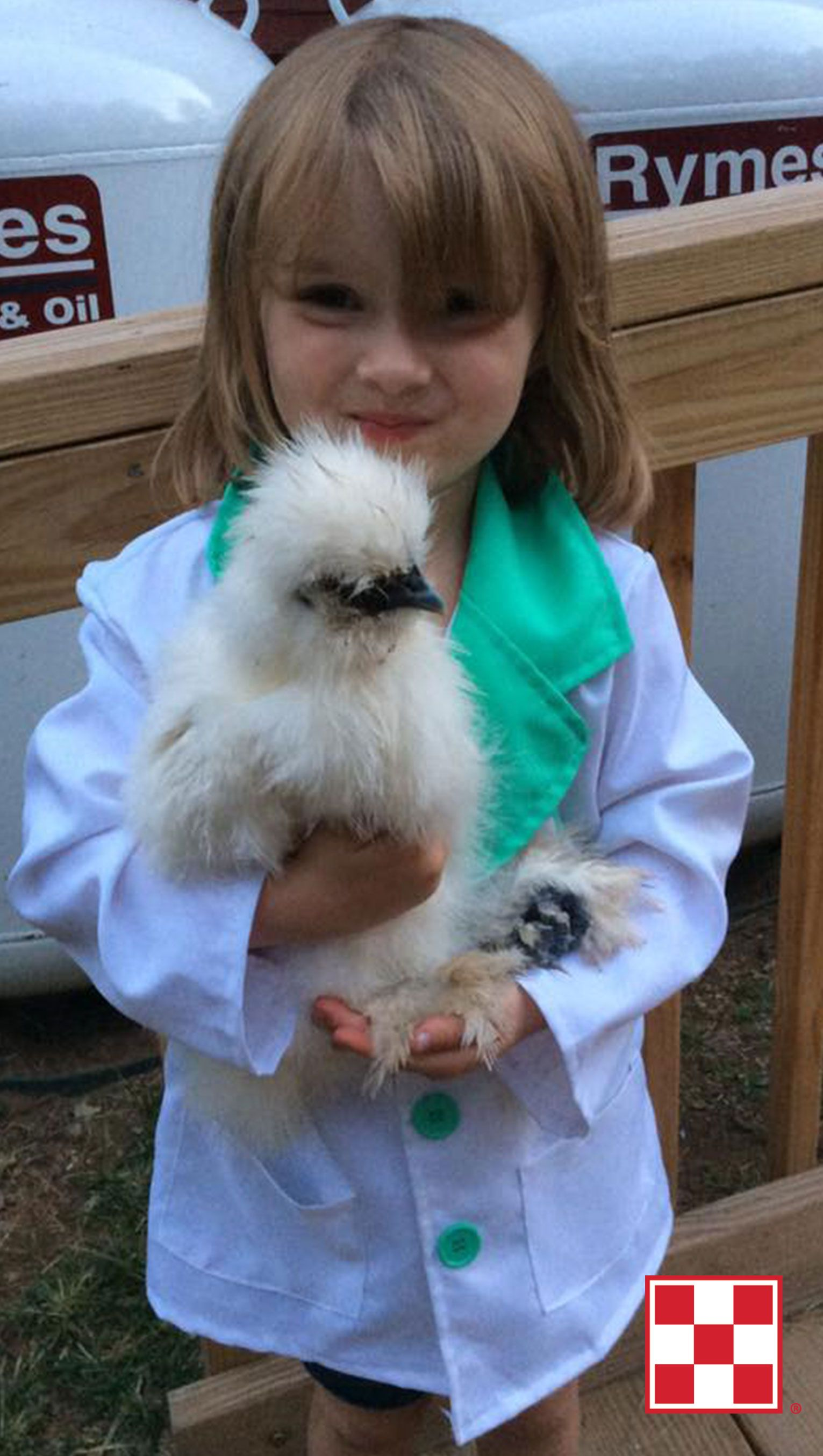 what u0027s the best pet for kids a chicken click to learn why