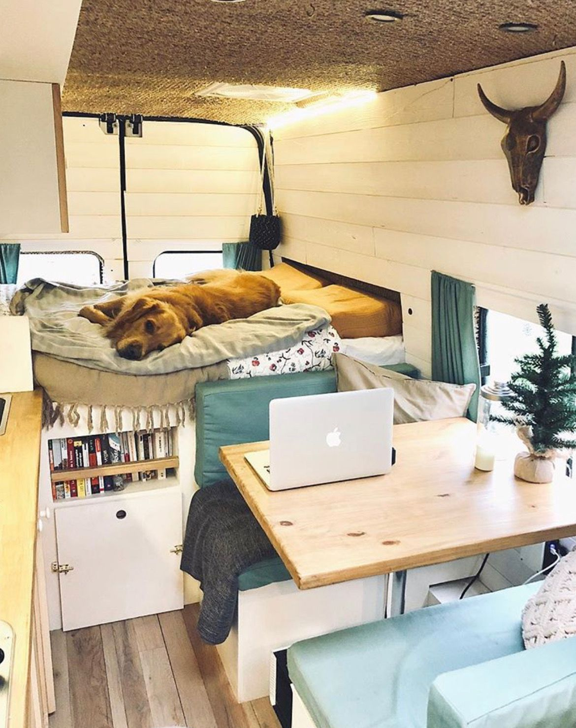 Photo of Van Life Guide: How to build and live in a DIY camper van