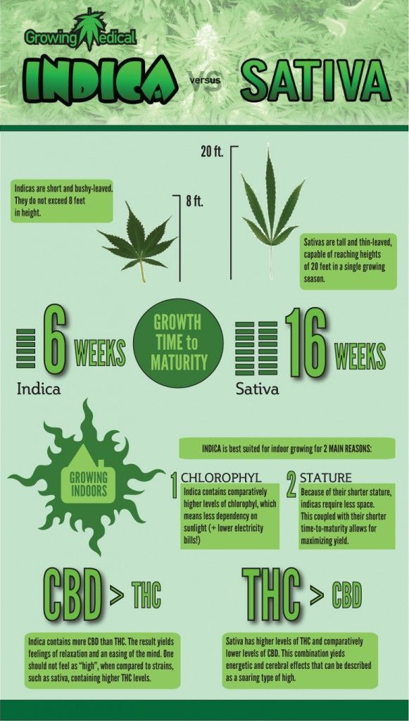 types of weed chart: Types of weed is the nets best medical marijuana site full of best